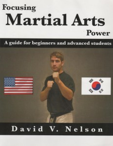 Focusing Martial Arts Power by Author David V. Nelson